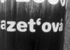 1_zetova.jpg